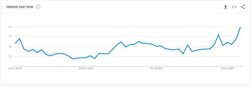 Dog Jacket Google Trend