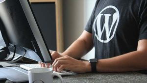 How to Protect a WordPress Site from Hackers?