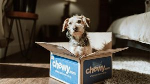 Pet Products and Services Market Takes a Fancy to Ecommerce with $99 Billion Sales