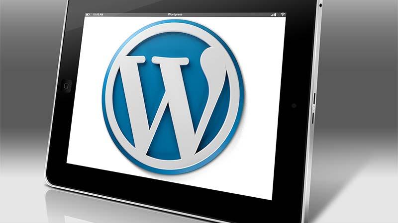 How to Redirect URLs in WordPress?