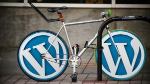 How to Speed Up Your WordPress Website?