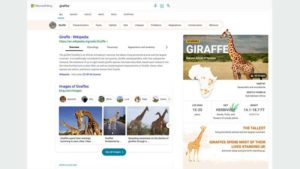 Microsoft Bing delivers more visually immersive experiences that save you time